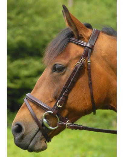 Celtic Equine Comfort Bridle with FREE MARTINGALE
