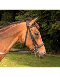Mackey Padded Nylon Bridle