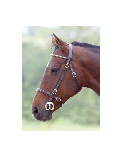 Shires In Hand Bridles