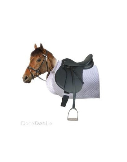 Starter Pack for Horse or Pony