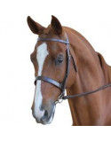 Blenheim Cavesson Bridle