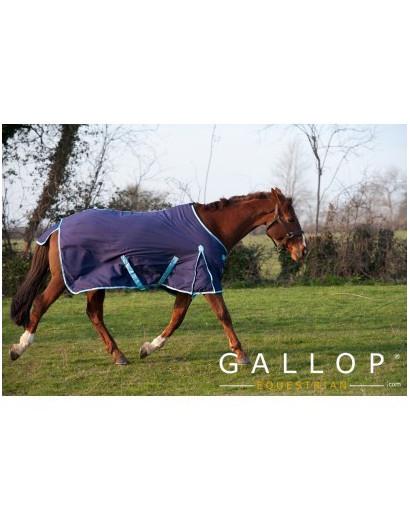 Gallop Summer Sheet