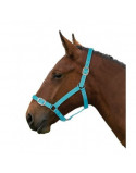 Nylon Headcollar- Multibuy Options