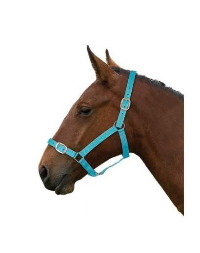 Nylon Headcollar- Multibuy Options