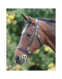 Blenheim Inhand Bridle