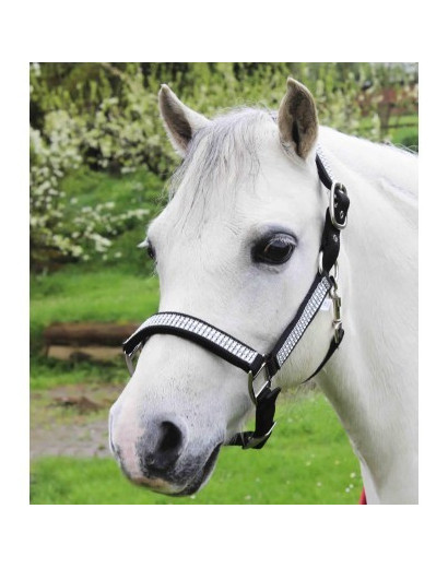 Gallop Diamante Headcollar