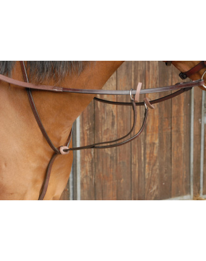 Celtic Equine Running Martingale- Full Grain
