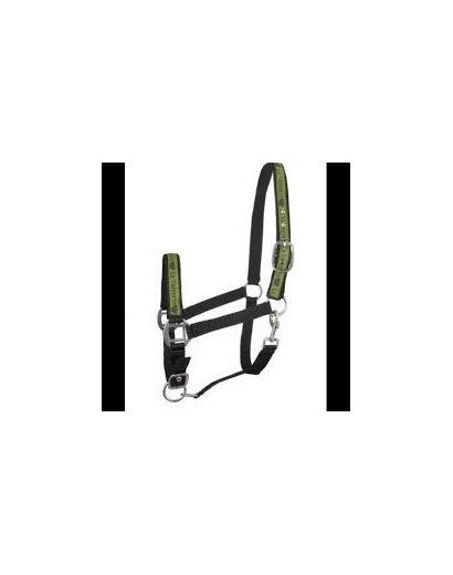 "La Valencio ""High Five"" Headcollar Pony"
