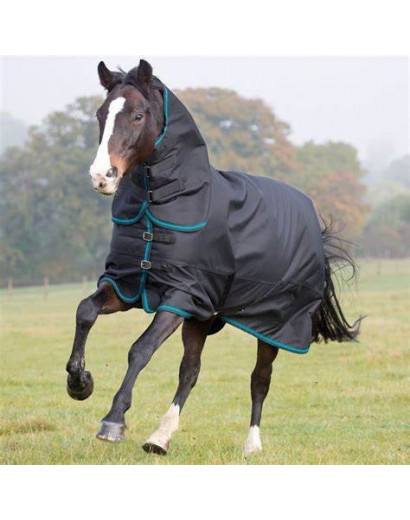 Shires Tempest Plus 300g Turnout Combo