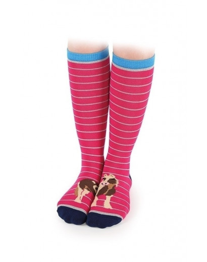 Shires Everyday Socks -Adult- Coltoes