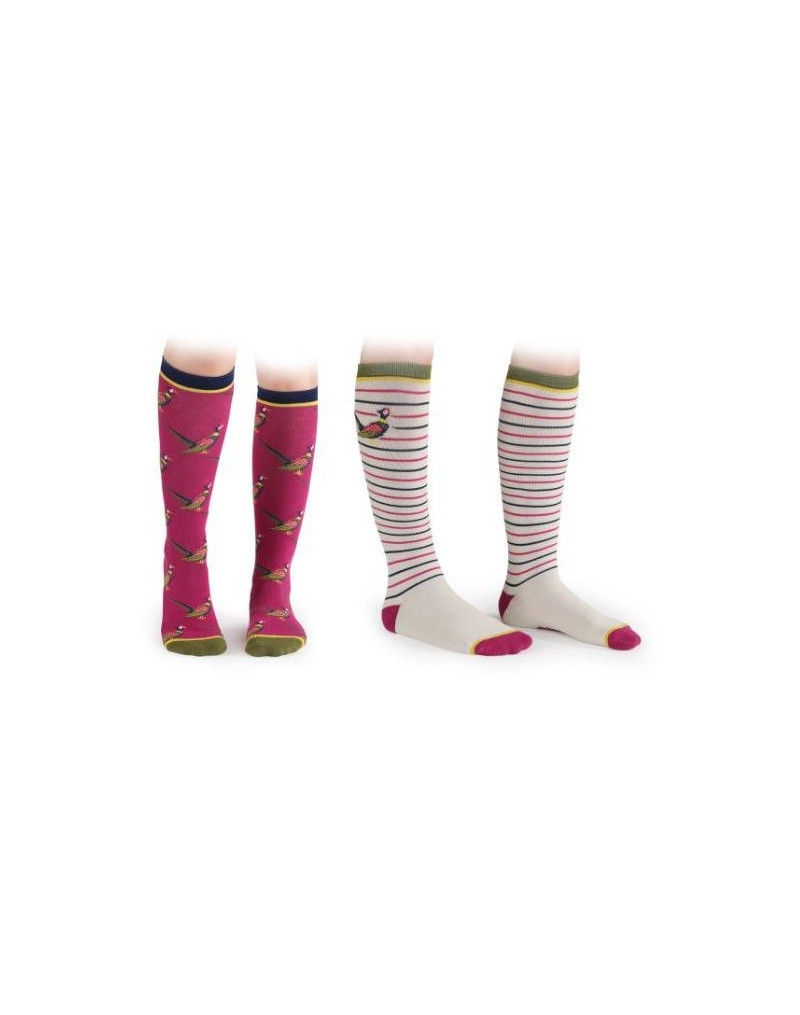 Shires Everyday Socks (2pack) - Fox- Adults