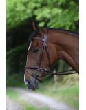 """Celtic Equine """"Puissance""""- Pony Size Black & Brown"""