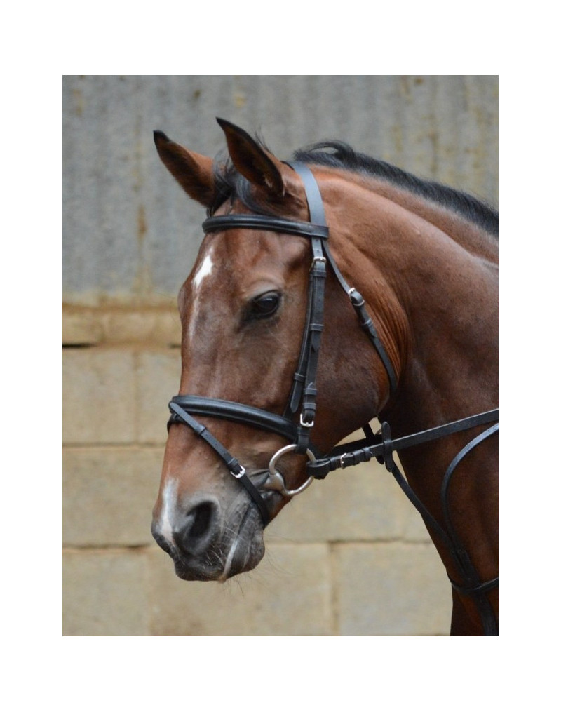 Equisential Leather Bridle & Reins- Black