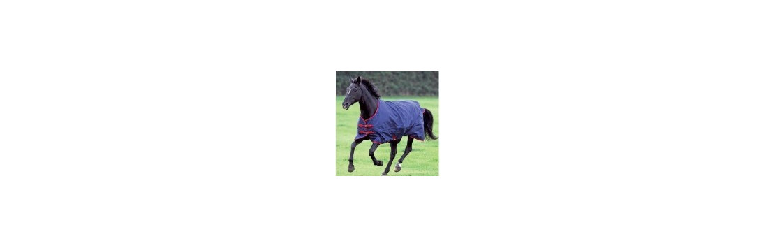 Horse Rugs | Essentially Equestrian, Ireland